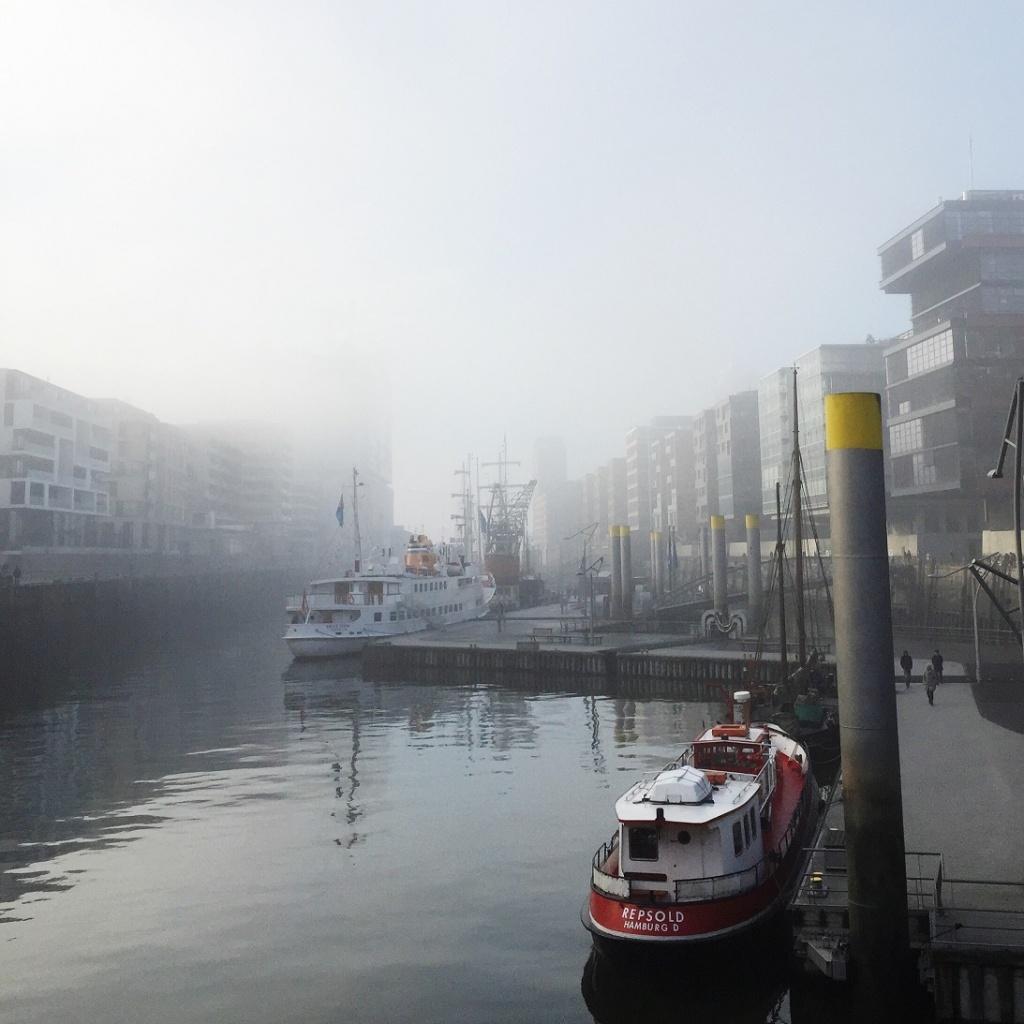 Elphilharmonie im Nebel