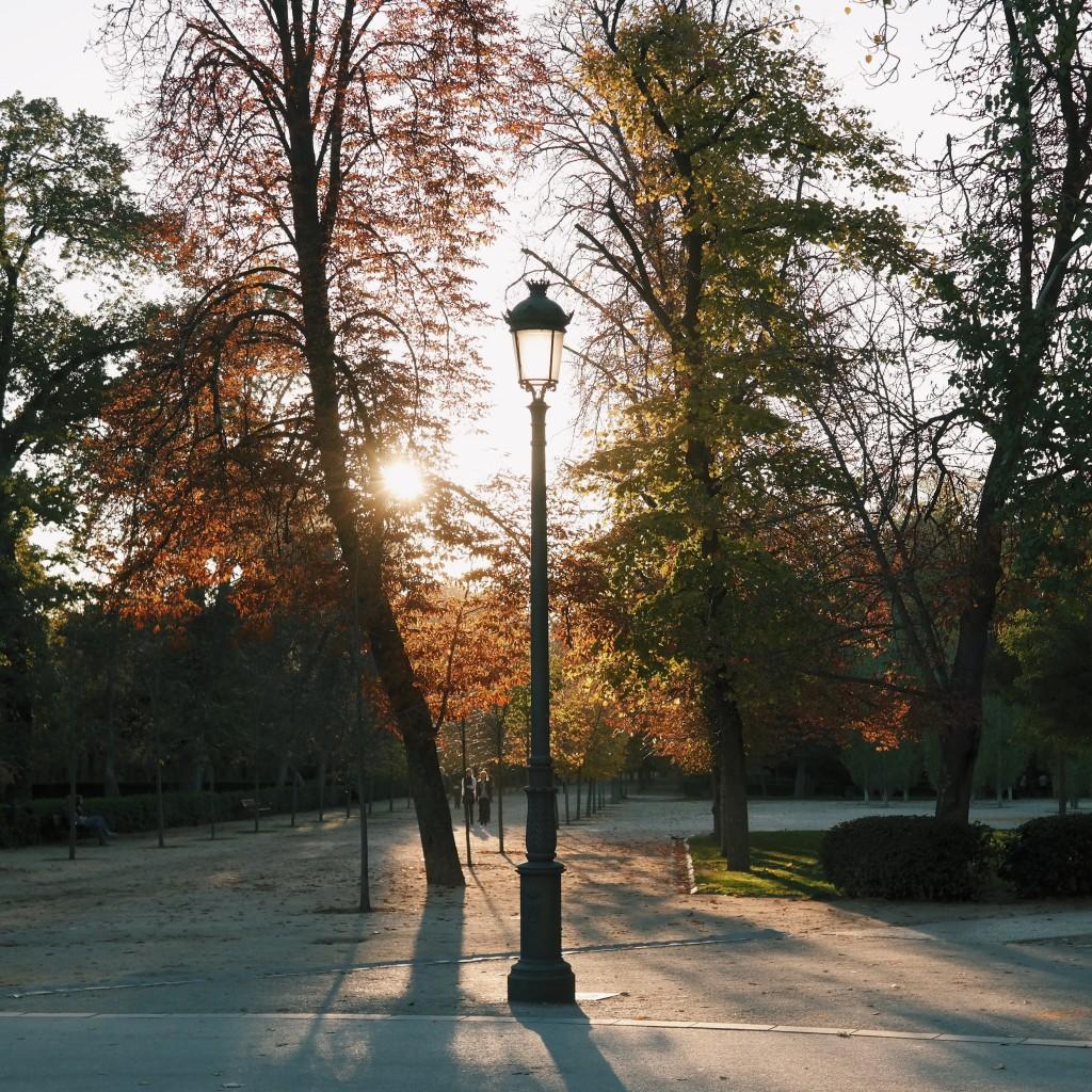 Herbststimmung im Retiro Park Madrid